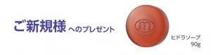 スクリーンショット 2021-04-02 162550 (003)